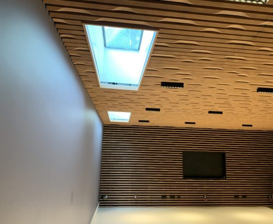 Cinema Room Electric Roof Blinds - Fitted in West Sussex by The Electric Blind Company