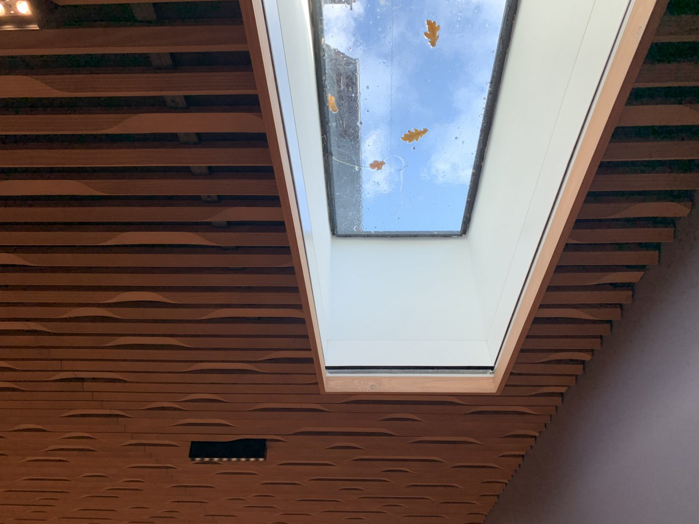 Electric Roof Blinds - Fitted in West Sussex by The Electric Blind Company
